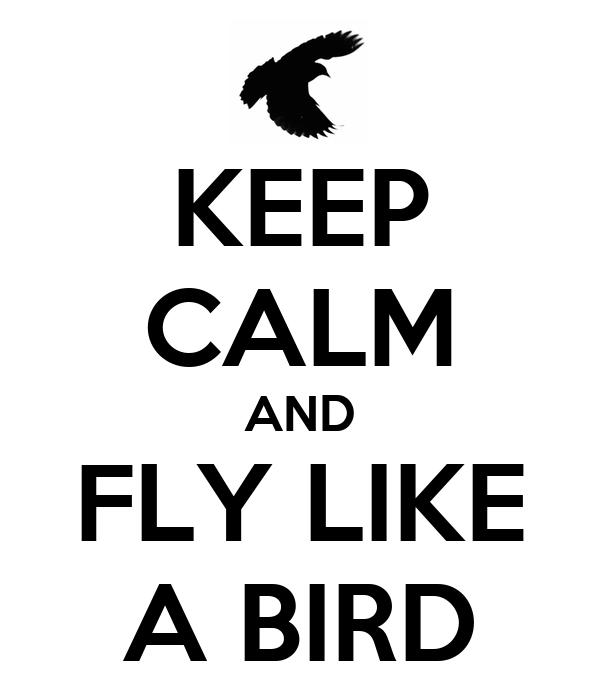 KEEP CALM AND FLY LIKE A BIRD