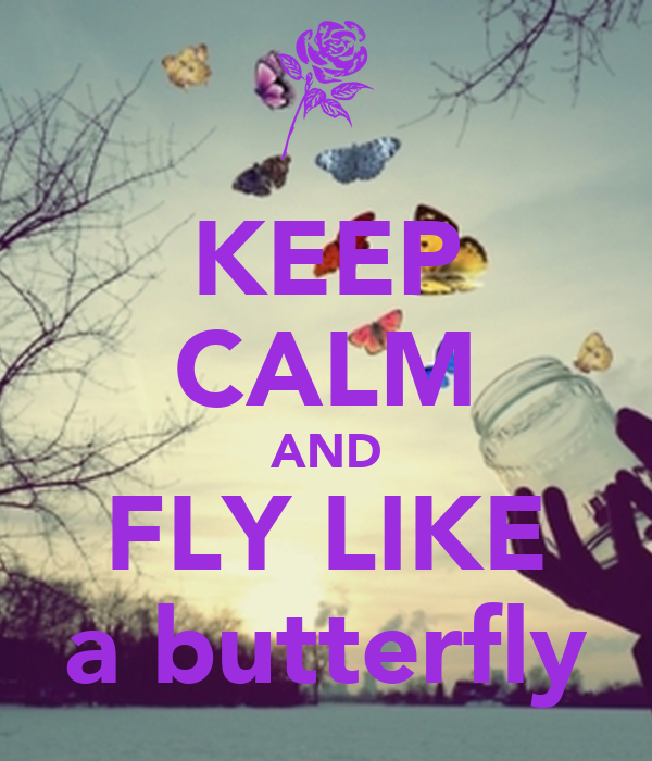 KEEP CALM AND FLY LIKE a butterfly