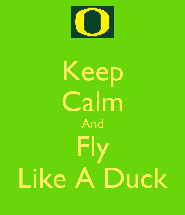 Keep Calm And Fly Like A Duck