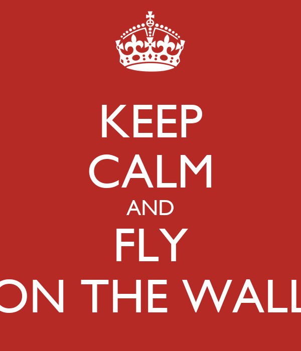 KEEP CALM AND FLY ON THE WALL