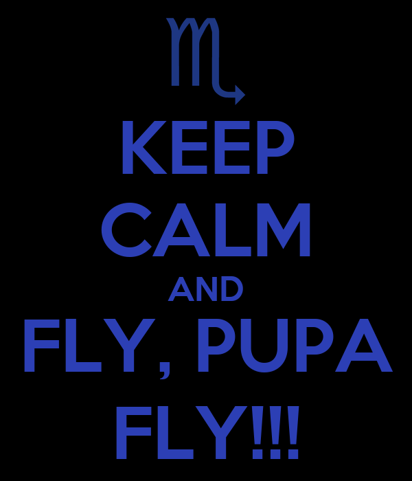 KEEP CALM AND FLY, PUPA FLY!!!