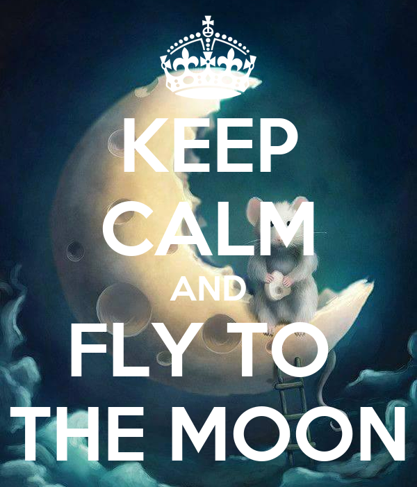 KEEP CALM AND FLY TO  THE MOON