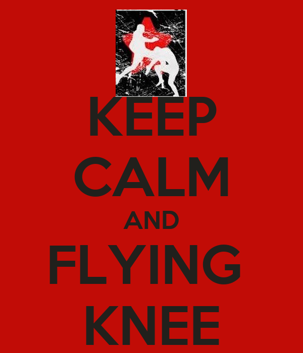 KEEP CALM AND FLYING  KNEE