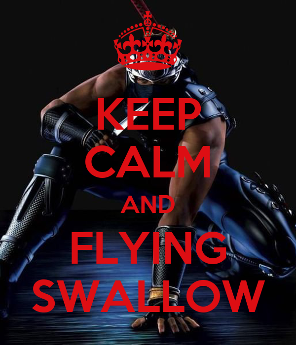 KEEP CALM AND FLYING SWALLOW