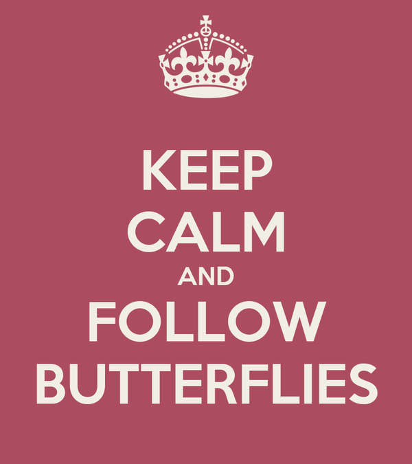 KEEP CALM AND FOLLOW BUTTERFLIES