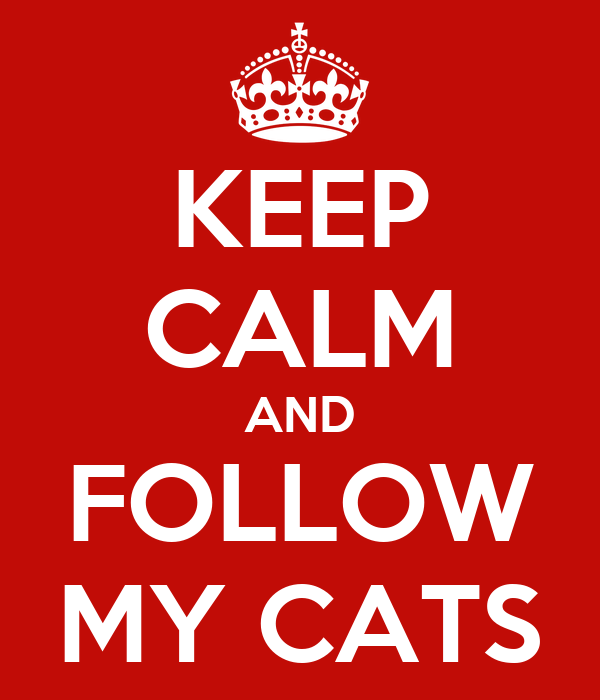 KEEP CALM AND FOLLOW MY CATS