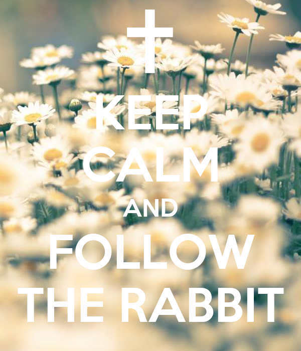 KEEP CALM AND FOLLOW THE RABBIT