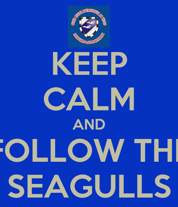 KEEP CALM AND FOLLOW THE SEAGULLS