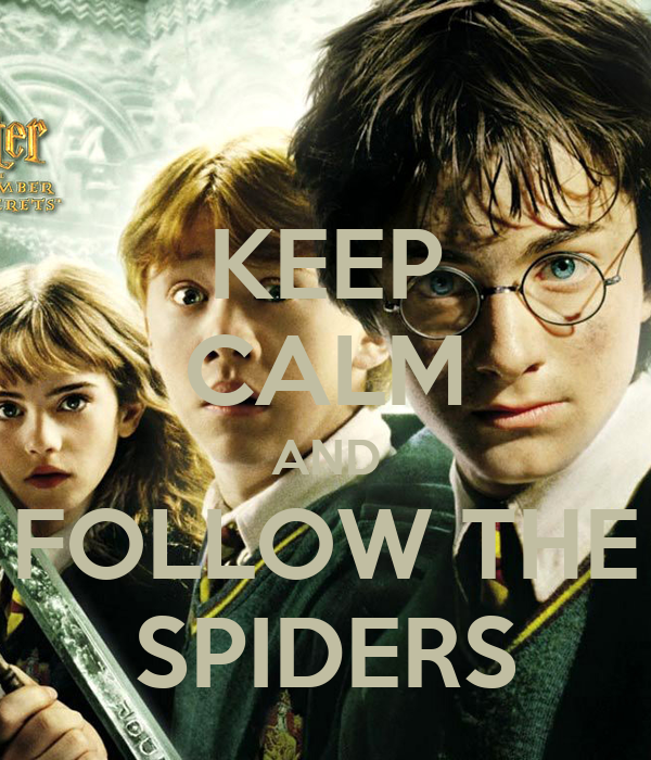 KEEP CALM AND FOLLOW THE SPIDERS