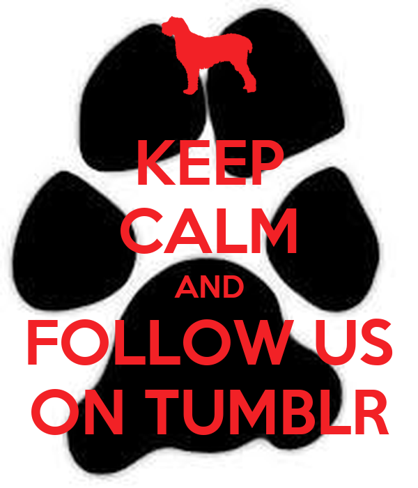 KEEP CALM AND FOLLOW US ON TUMBLR