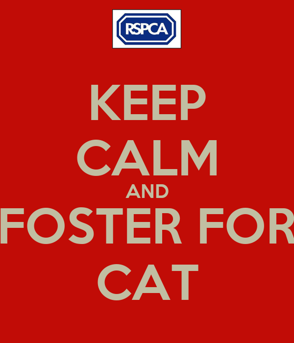 KEEP CALM AND FOSTER FOR CAT