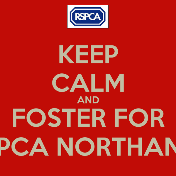 KEEP CALM AND FOSTER FOR RSPCA NORTHANTS