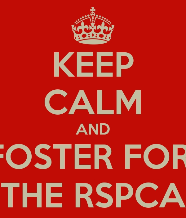 KEEP CALM AND FOSTER FOR  THE RSPCA