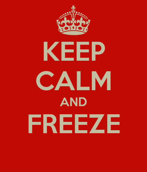 KEEP CALM AND FREEZE