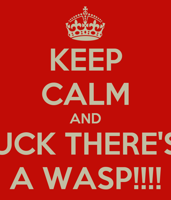 KEEP CALM AND FUCK THERE'S   A WASP!!!!
