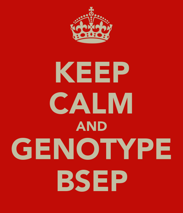 KEEP CALM AND GENOTYPE BSEP
