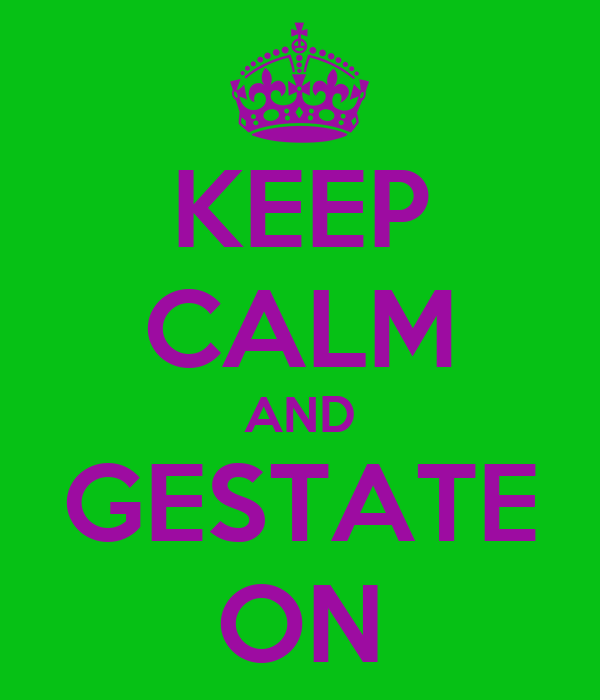 KEEP CALM AND GESTATE ON
