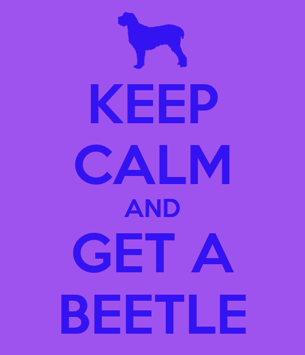KEEP CALM AND GET A BEETLE