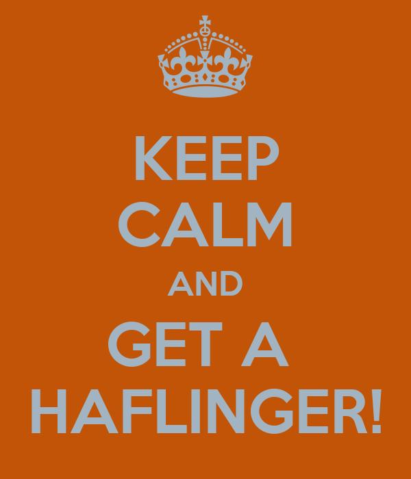 KEEP CALM AND GET A  HAFLINGER!