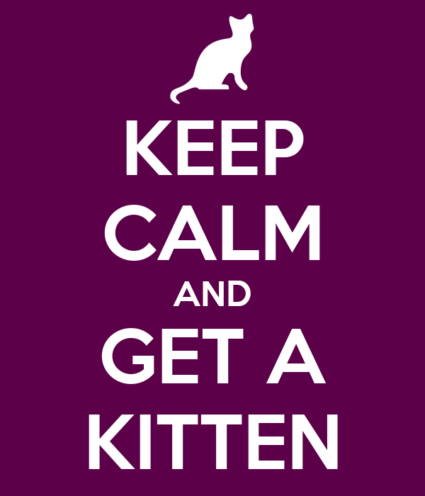 KEEP CALM AND GET A KITTEN