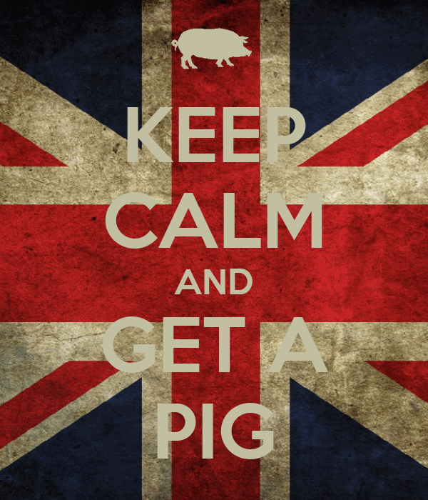 KEEP CALM AND GET A PIG