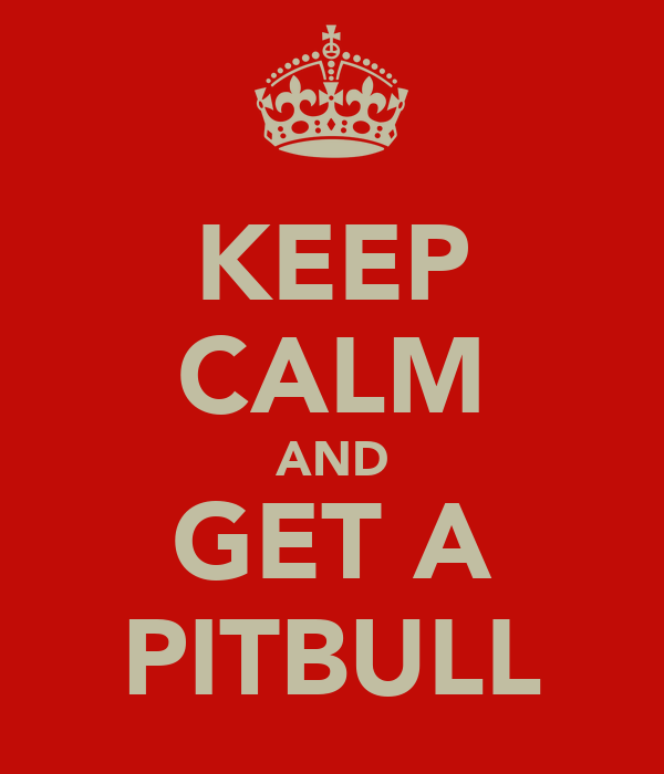KEEP CALM AND GET A PITBULL