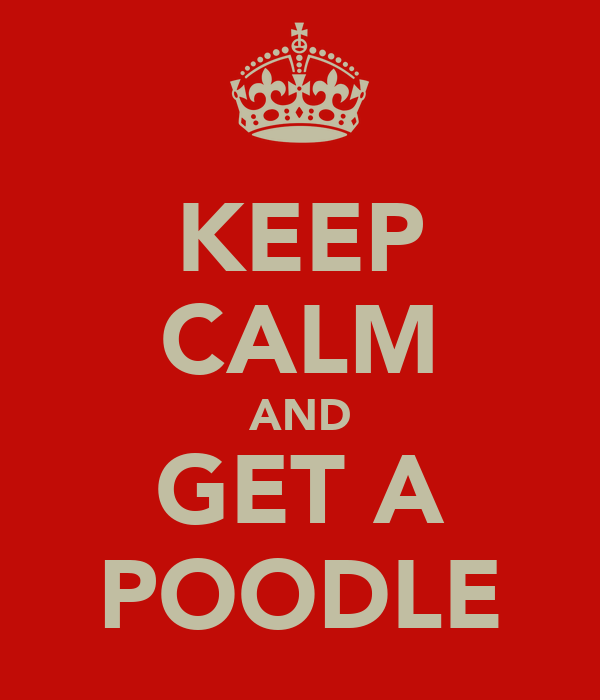 KEEP CALM AND GET A POODLE