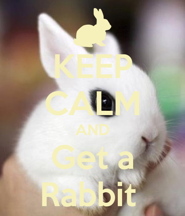 KEEP CALM AND Get a Rabbit