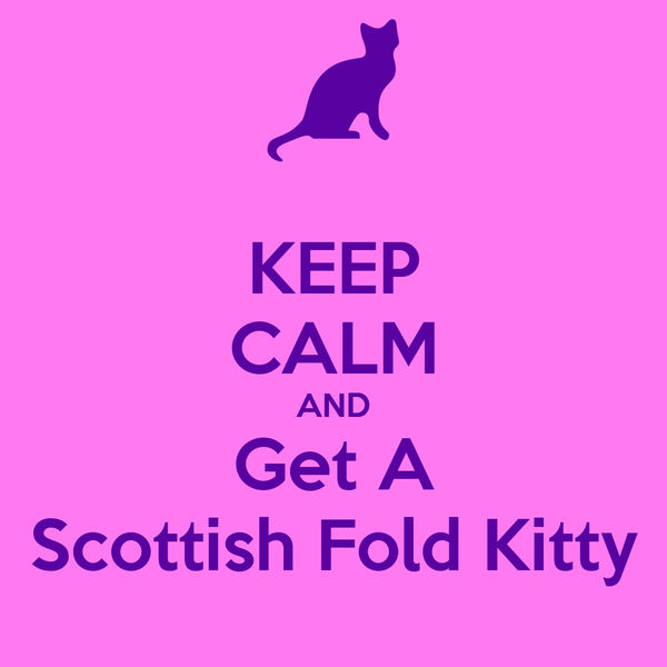 KEEP CALM AND Get A Scottish Fold Kitty