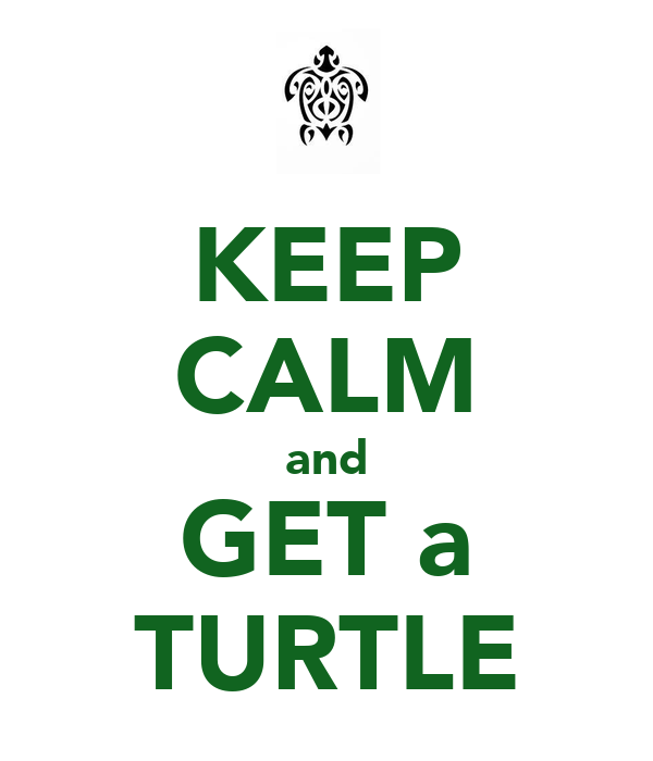 KEEP CALM and GET a TURTLE