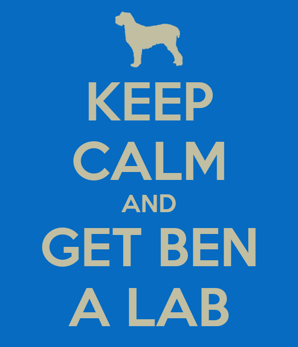 KEEP CALM AND GET BEN A LAB