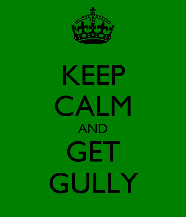 KEEP CALM AND GET GULLY