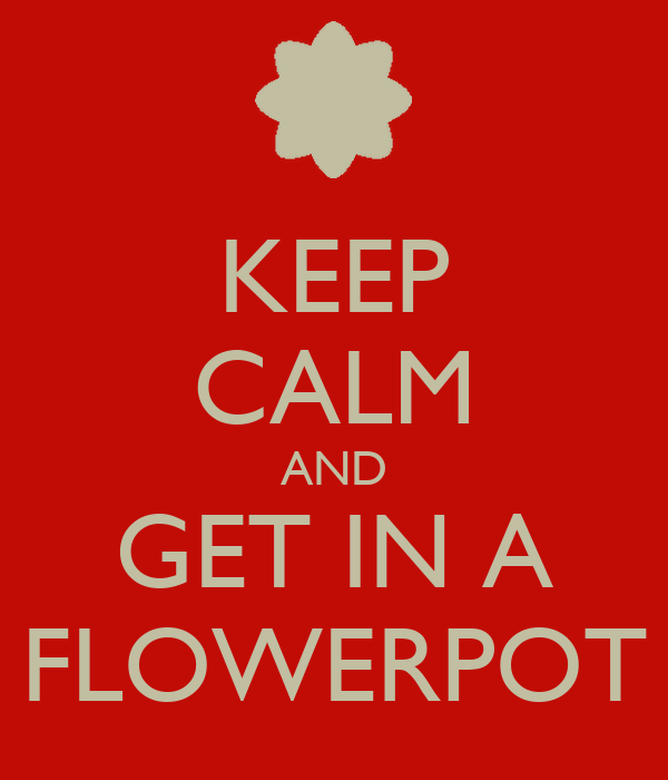 KEEP CALM AND GET IN A FLOWERPOT