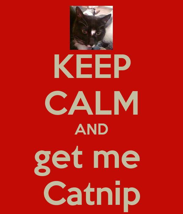 KEEP CALM AND get me  Catnip