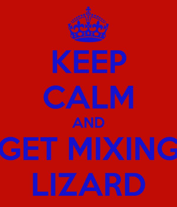 KEEP CALM AND GET MIXING LIZARD