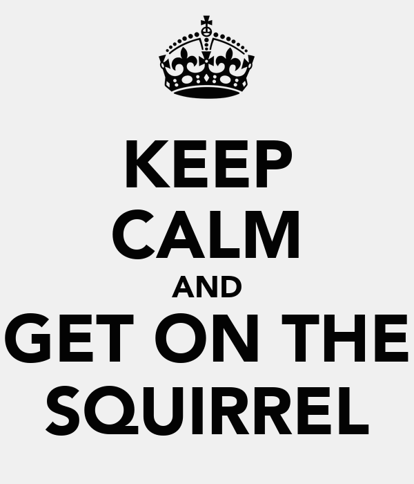 KEEP CALM AND GET ON THE SQUIRREL