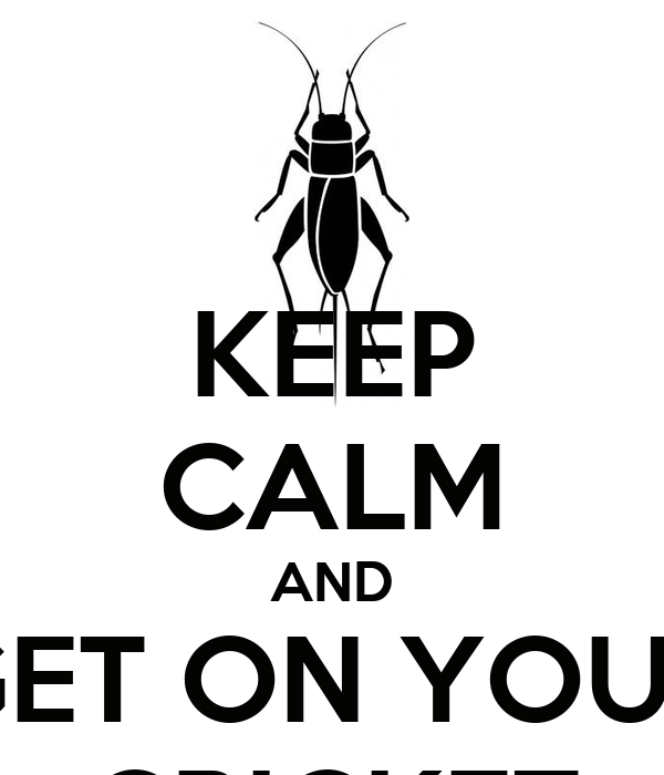 KEEP CALM AND GET ON YOUR CRICKET