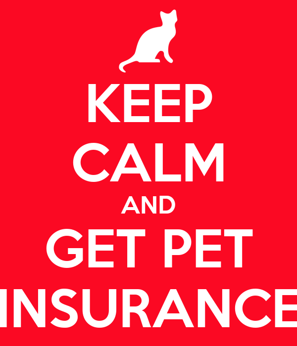 KEEP CALM AND GET PET INSURANCE