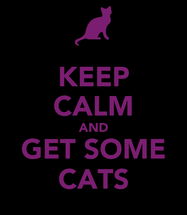 KEEP CALM AND GET SOME CATS