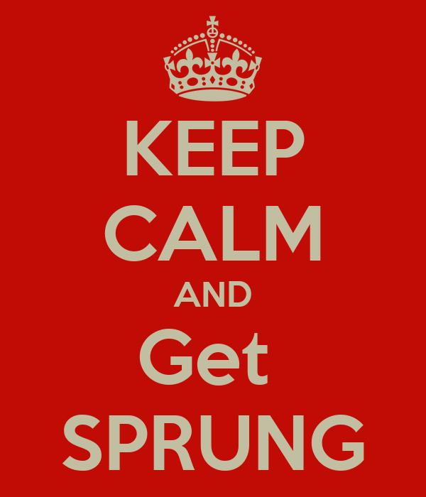 KEEP CALM AND Get  SPRUNG