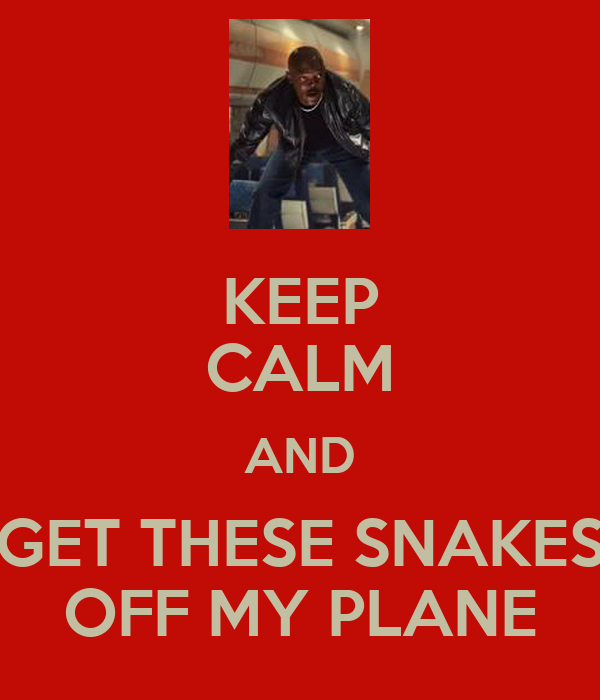 KEEP CALM AND GET THESE SNAKES OFF MY PLANE