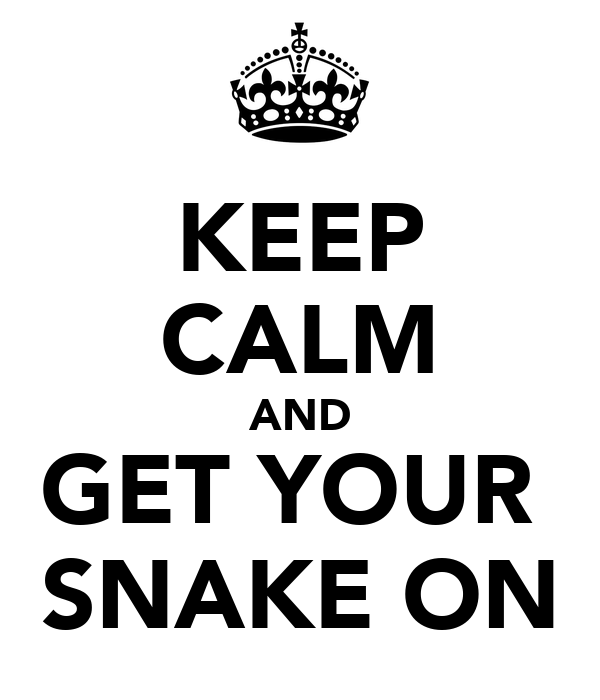 KEEP CALM AND GET YOUR  SNAKE ON