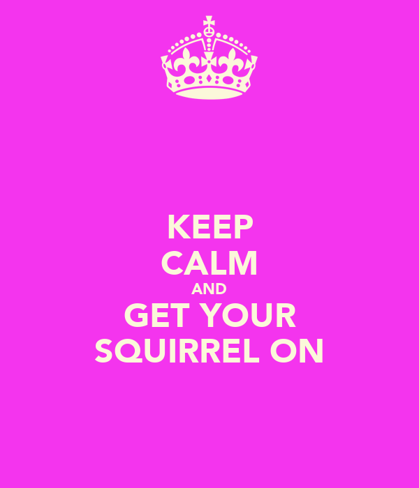 KEEP CALM AND GET YOUR SQUIRREL ON