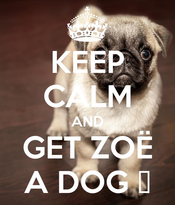 KEEP CALM AND GET ZOË A DOG 😀