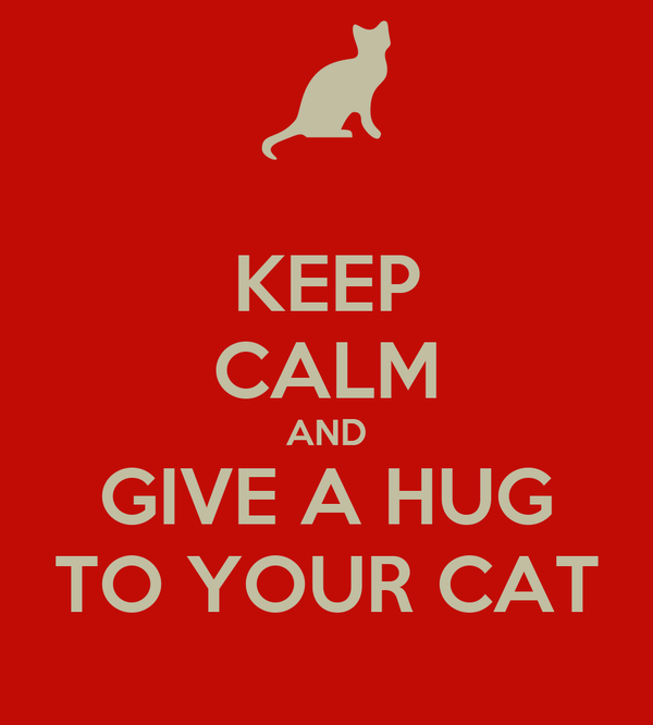 KEEP CALM AND GIVE A HUG TO YOUR CAT