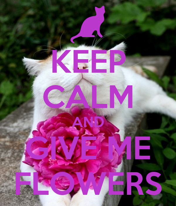 KEEP CALM AND GIVE ME FLOWERS