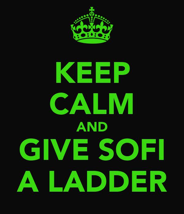 KEEP CALM AND GIVE SOFI A LADDER