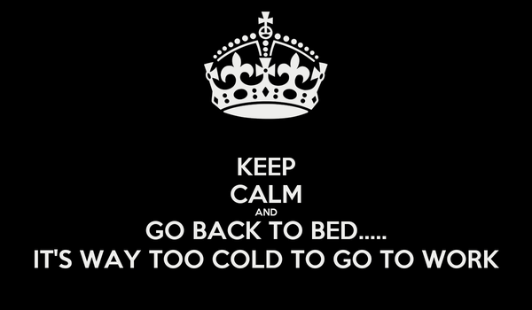 KEEP CALM AND GO BACK TO BED..... IT'S WAY TOO COLD TO GO TO WORK