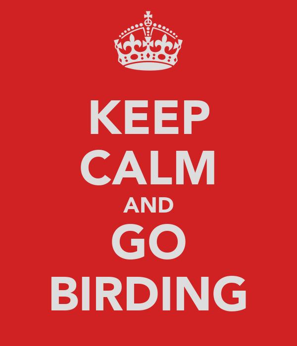 KEEP CALM AND GO BIRDING