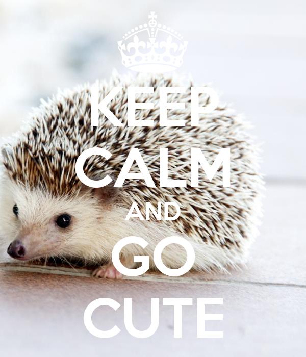 KEEP CALM AND GO CUTE